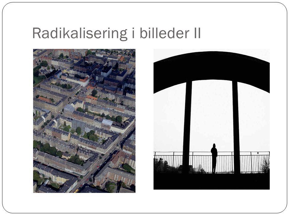 Radikalisering i billeder II