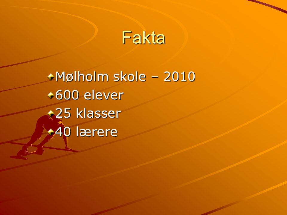 Mølholm skole – 2010 600 elever 25 klasser 40 lærere