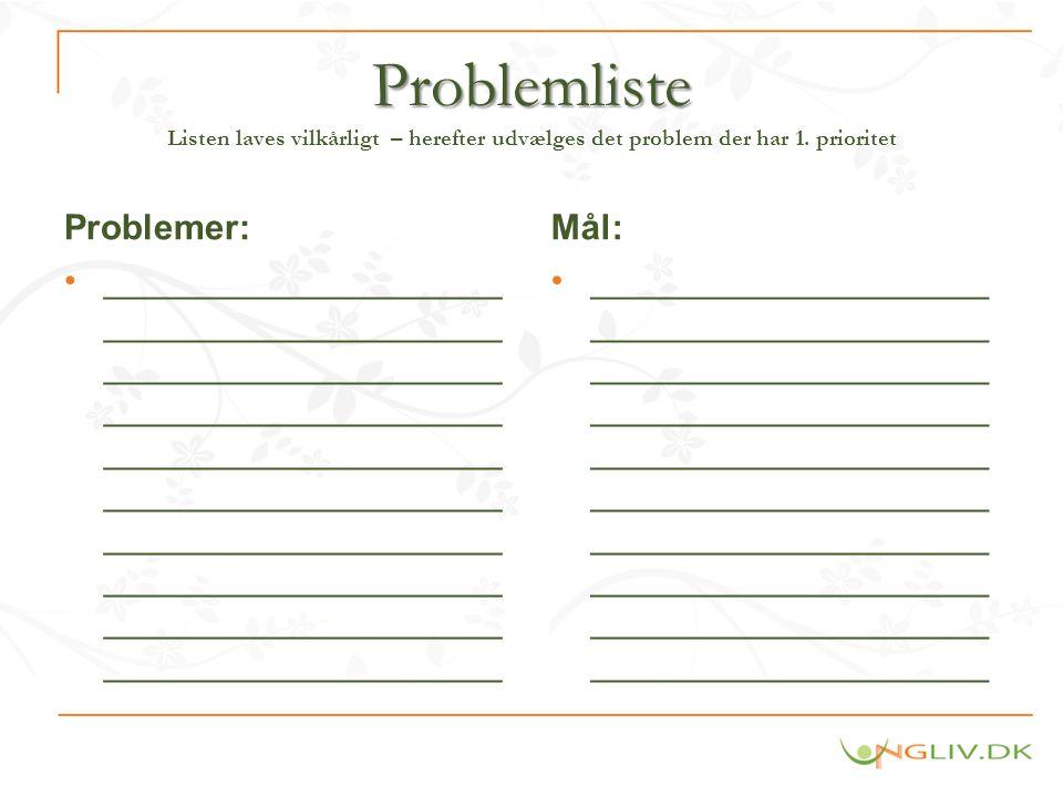 Problemliste Listen laves vilkårligt – herefter udvælges det problem der har 1. prioritet