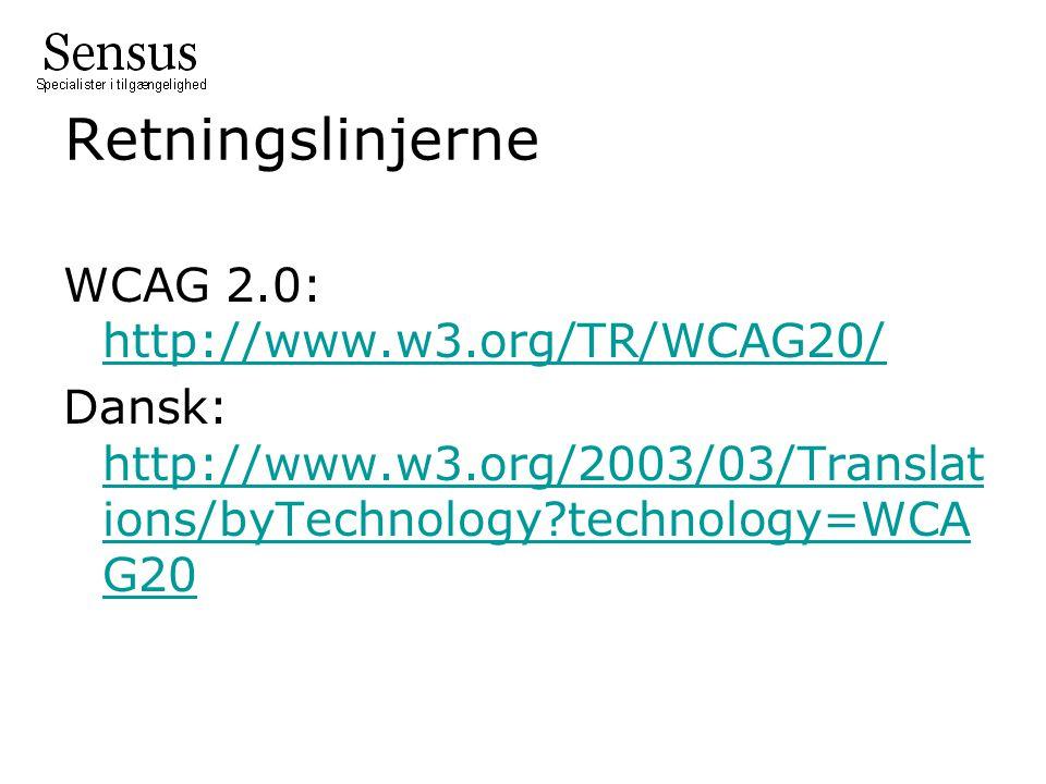 Retningslinjerne WCAG 2.0: http://www.w3.org/TR/WCAG20/ Dansk: http://www.w3.org/2003/03/Translations/byTechnology technology=WCAG20