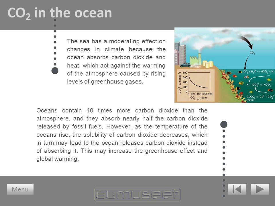 CO2 in the ocean