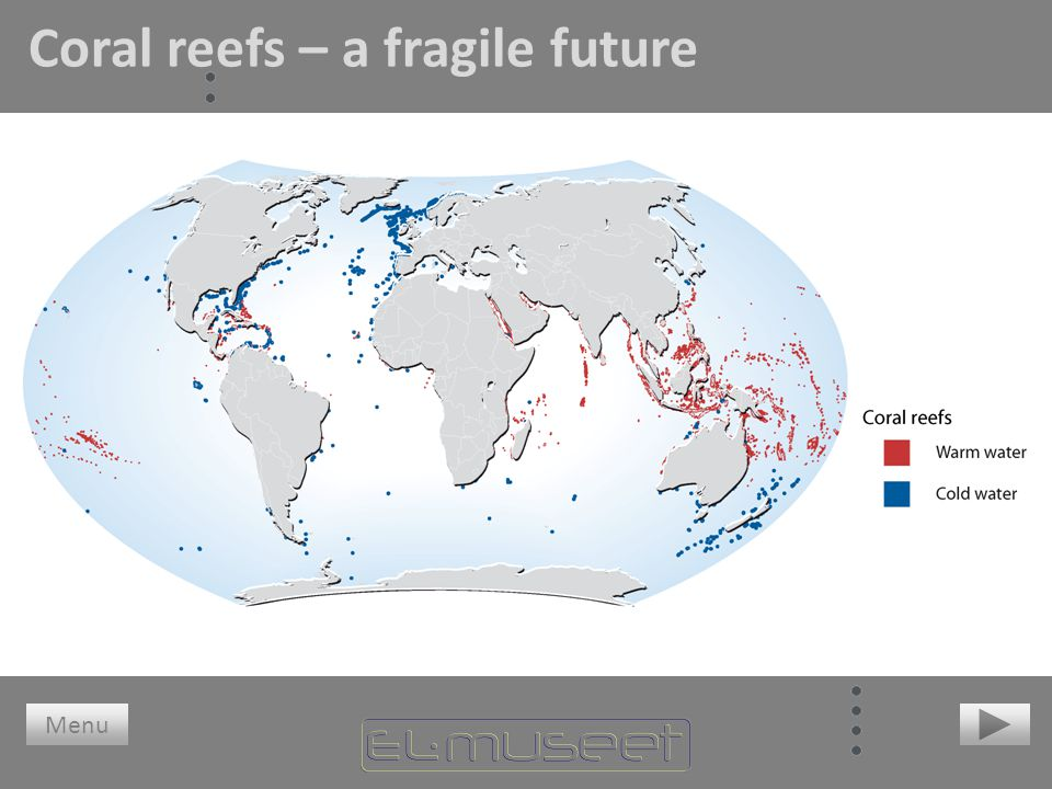 Coral reefs – a fragile future