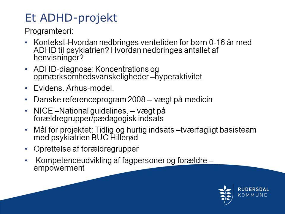 Et ADHD-projekt Programteori: