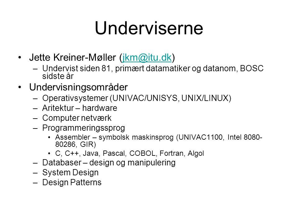 Underviserne Jette Kreiner-Møller (jkm@itu.dk) Undervisningsområder