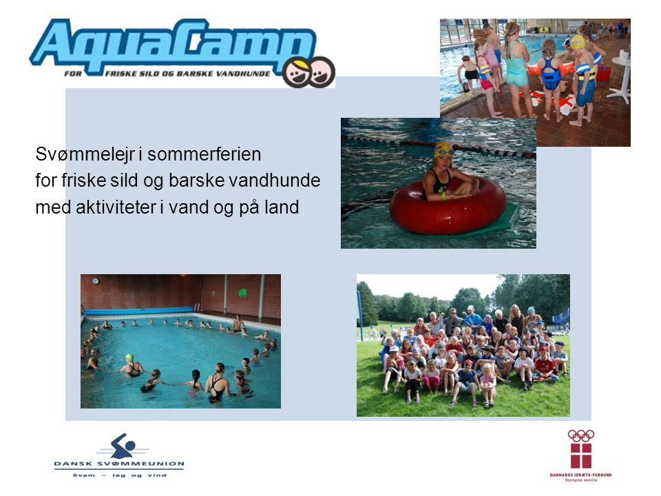 Svømmelejr i sommerferien
