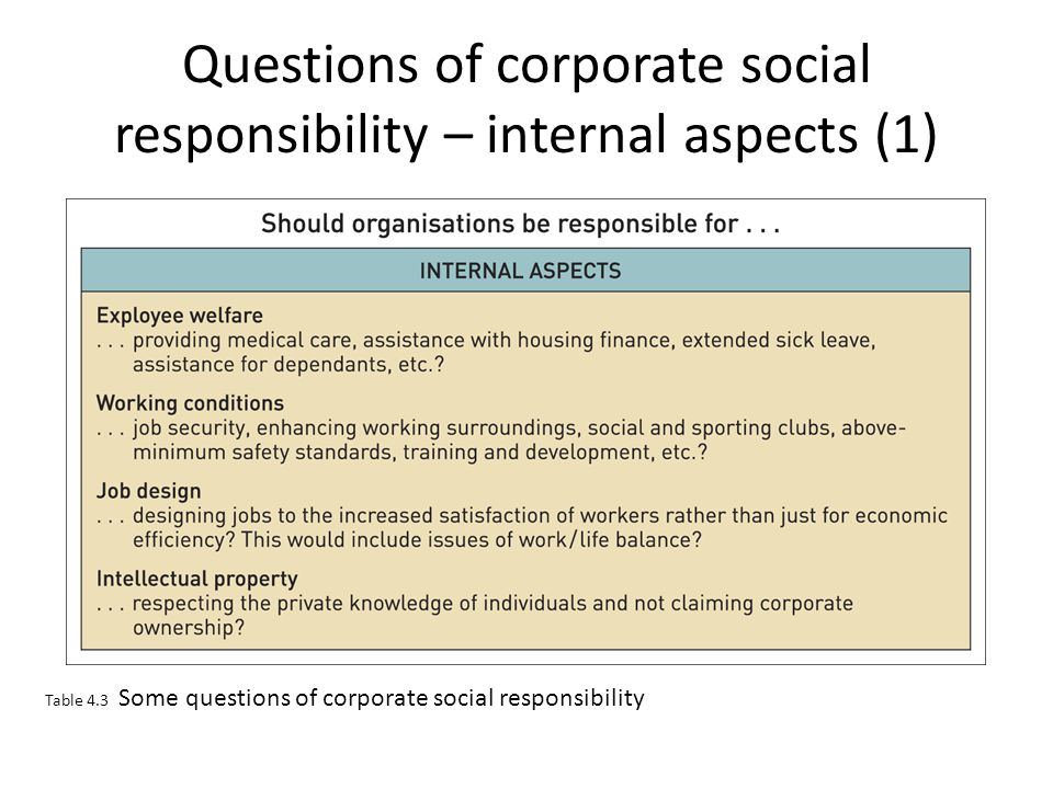 Questions of corporate social responsibility – internal aspects (1)