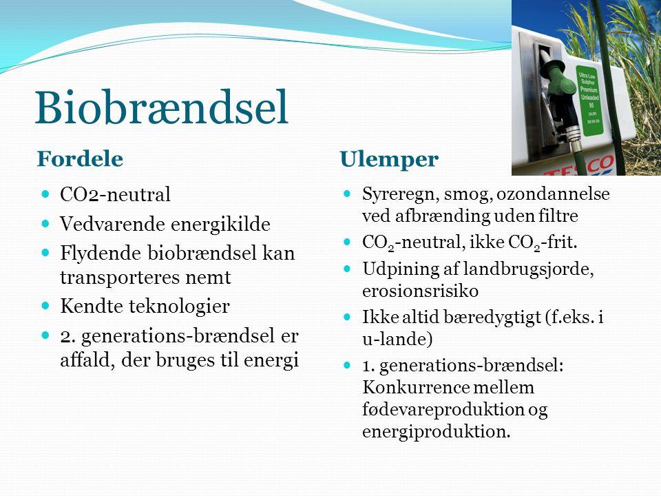 Biobrændsel Fordele Ulemper CO2-neutral Vedvarende energikilde