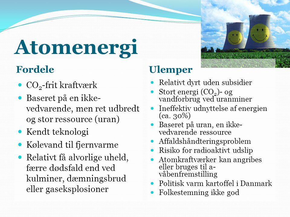 Atomenergi Fordele Ulemper CO2-frit kraftværk