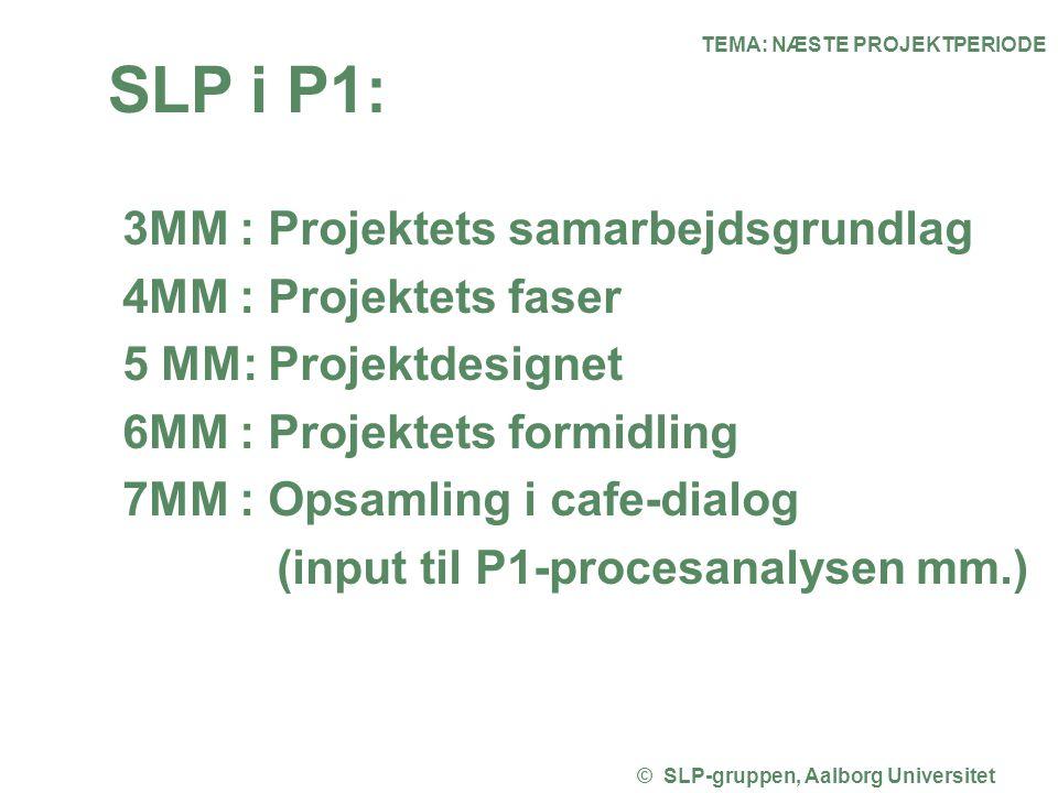 TEMA: NÆSTE PROJEKTPERIODE © SLP-gruppen, Aalborg Universitet