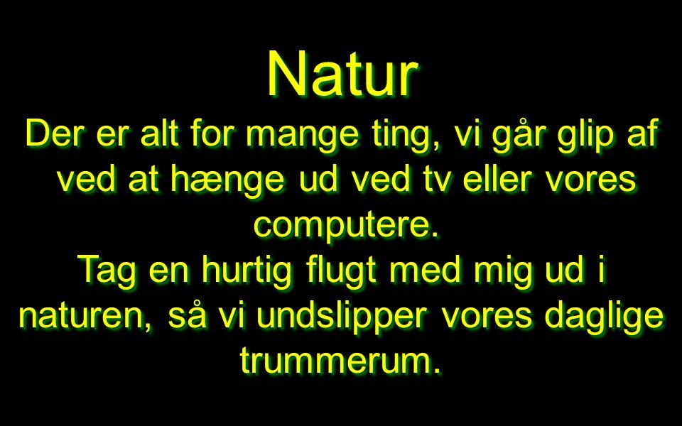 Natur Der er alt for mange ting, vi går glip af