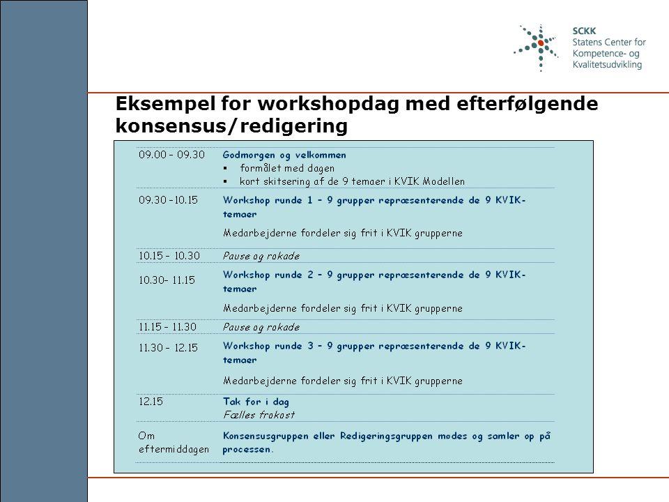 Eksempel for workshopdag med efterfølgende konsensus/redigering