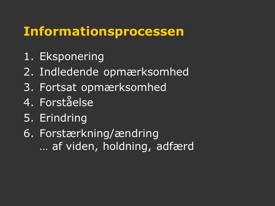 Informationsprocessen