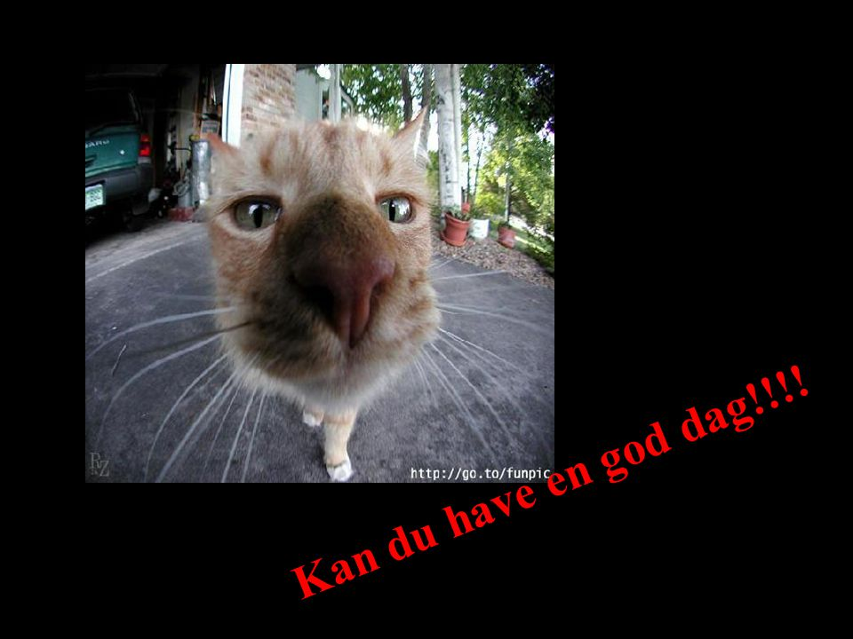 Kan du have en god dag!!!! S.R.
