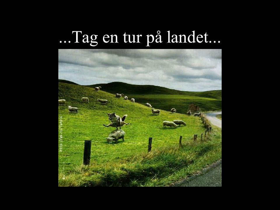 ...Tag en tur på landet...