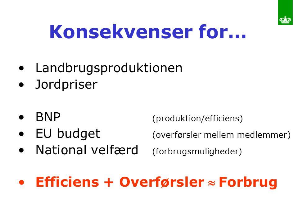 Konsekvenser for… Efficiens + Overførsler  Forbrug