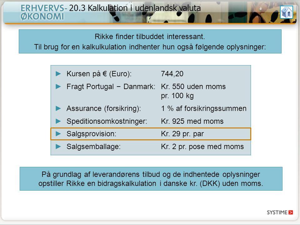 20.3 Kalkulation i udenlandsk valuta