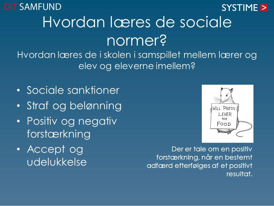 Hvordan læres de sociale normer