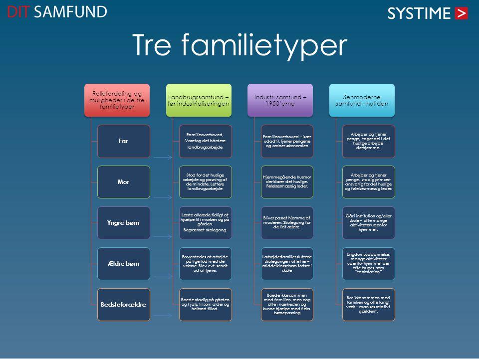 Tre familietyper Rollefordeling og muligheder i de tre familietyper
