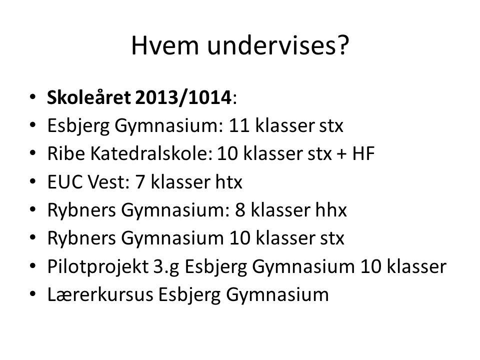 Hvem undervises Skoleåret 2013/1014: