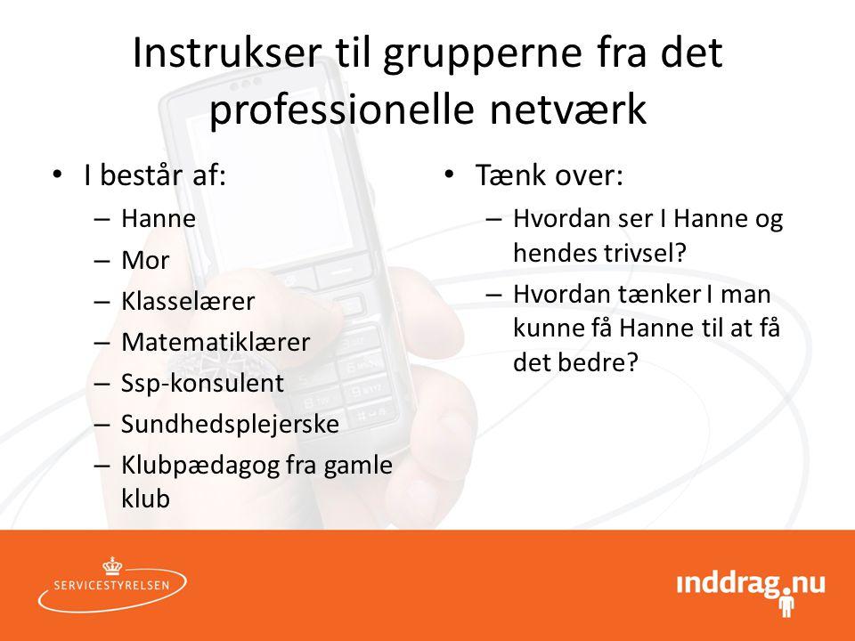 Instrukser til grupperne fra det professionelle netværk