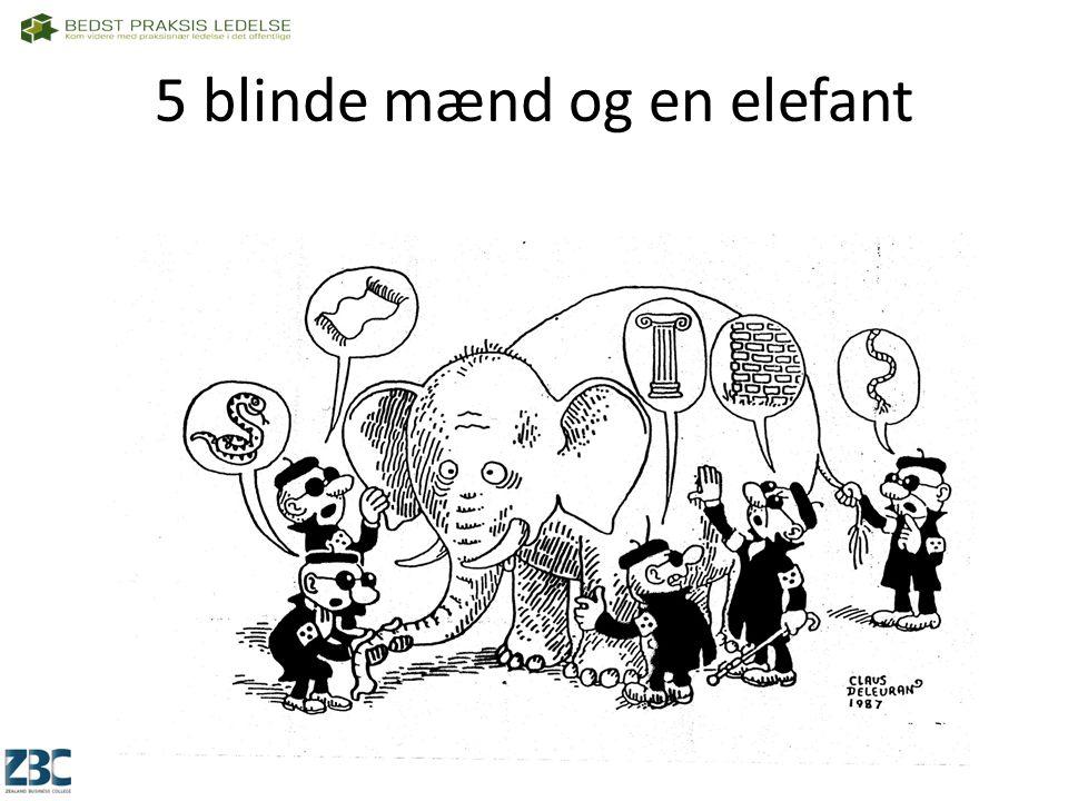 5 blinde mænd og en elefant