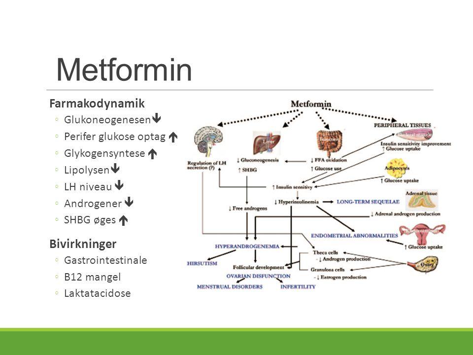 Metformin Farmakodynamik Bivirkninger Glukoneogenesen