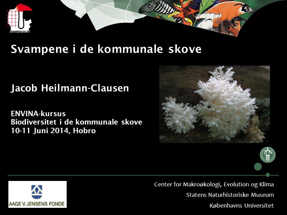 Svampene i de kommunale skove Jacob Heilmann-Clausen