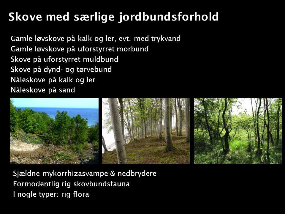 Skove med særlige jordbundsforhold