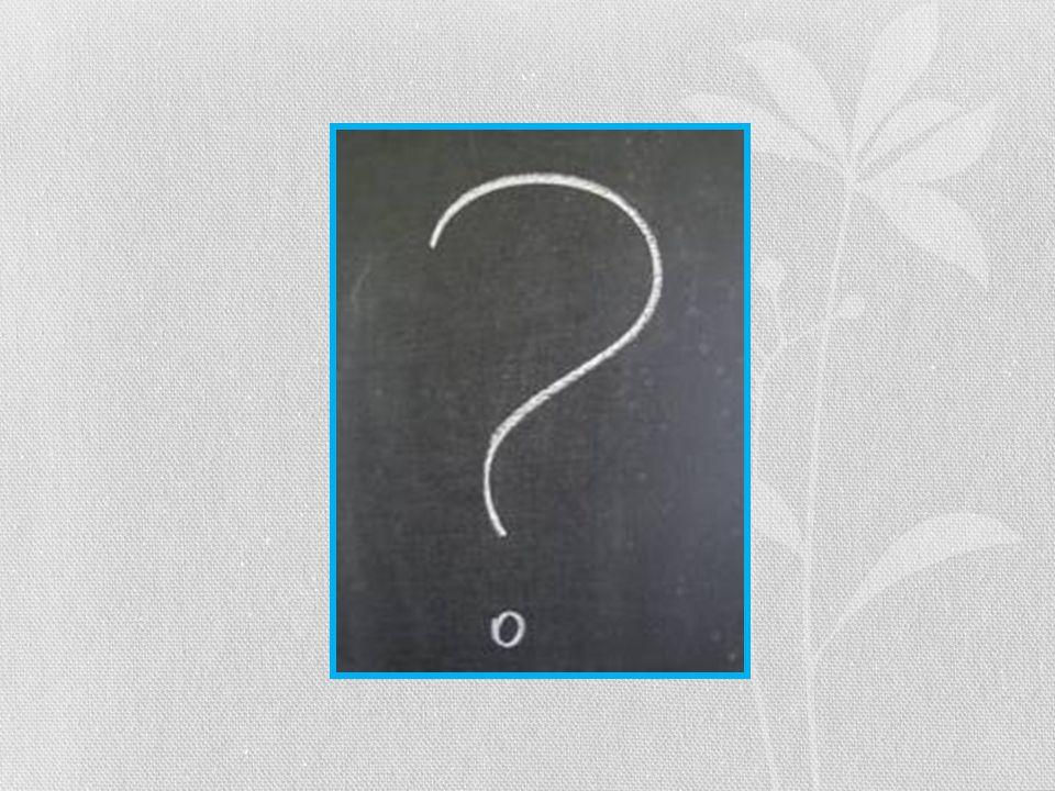 Spørgsmål og opsamling af dagen. Hvad skal vi næste gang