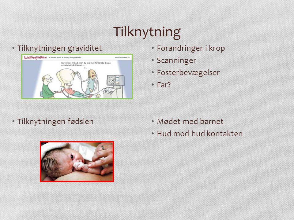 Tilknytning Tilknytningen graviditet Tilknytningen fødslen