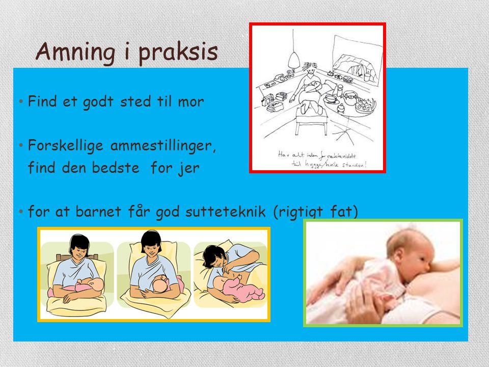 Amning i praksis Find et godt sted til mor Forskellige ammestillinger,