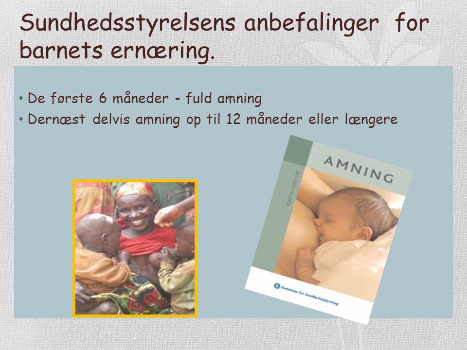 Sundhedsstyrelsens anbefalinger for barnets ernæring.