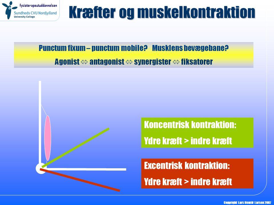 Kræfter og muskelkontraktion