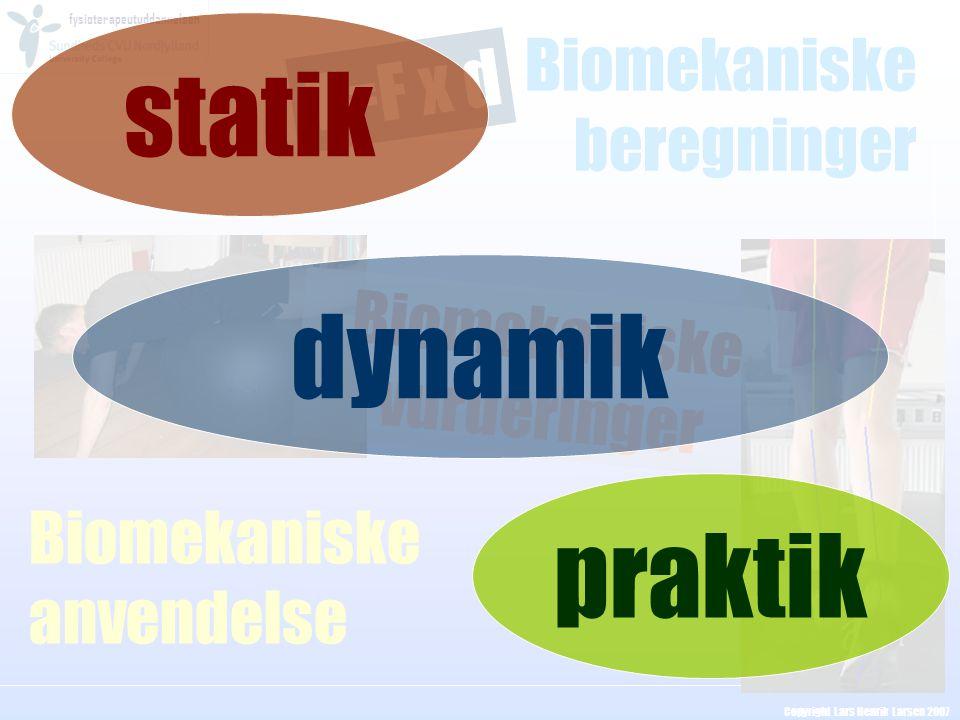 Biomekaniske vurderinger