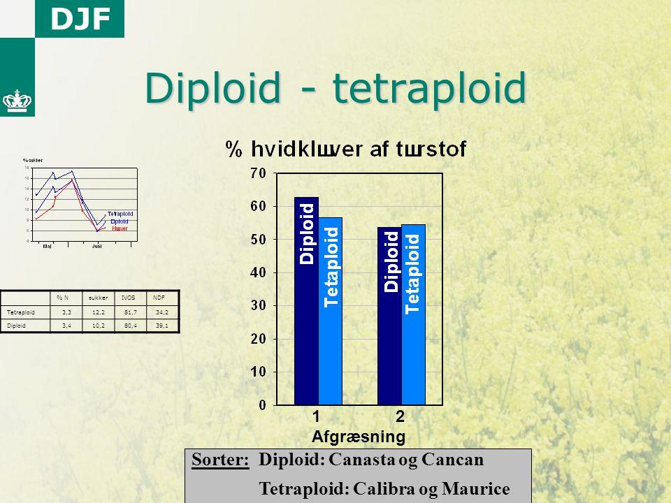 Diploid - tetraploid Sorter: Diploid: Canasta og Cancan