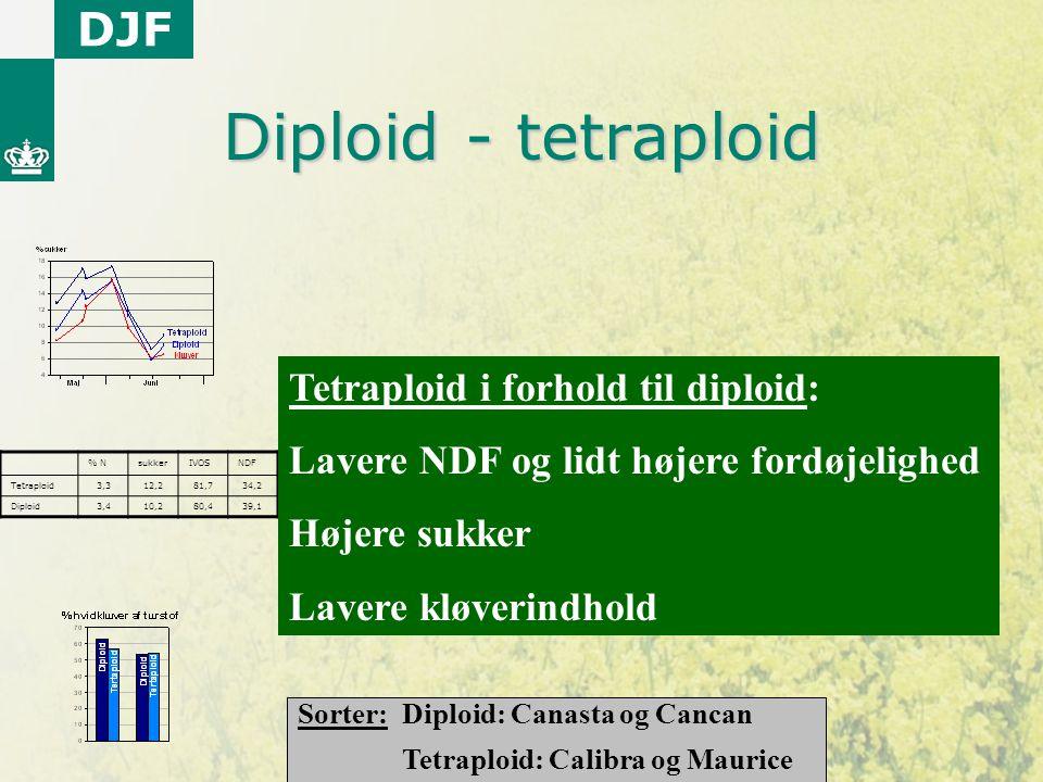 Diploid - tetraploid Tetraploid i forhold til diploid: