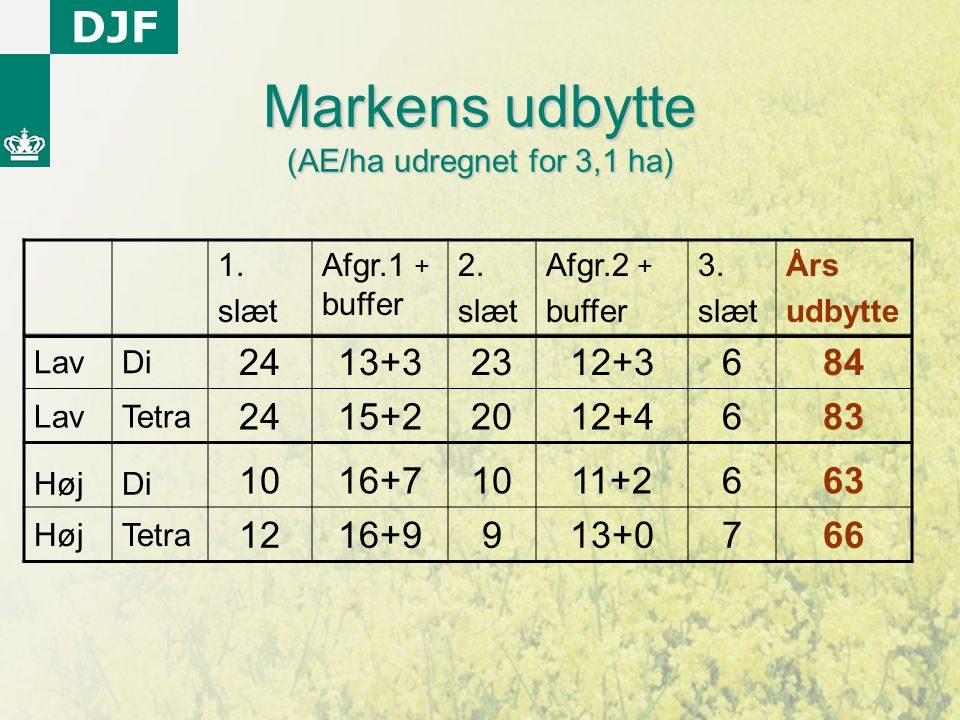 Markens udbytte (AE/ha udregnet for 3,1 ha)