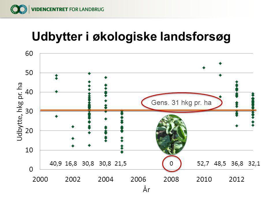 Udbytter i økologiske landsforsøg