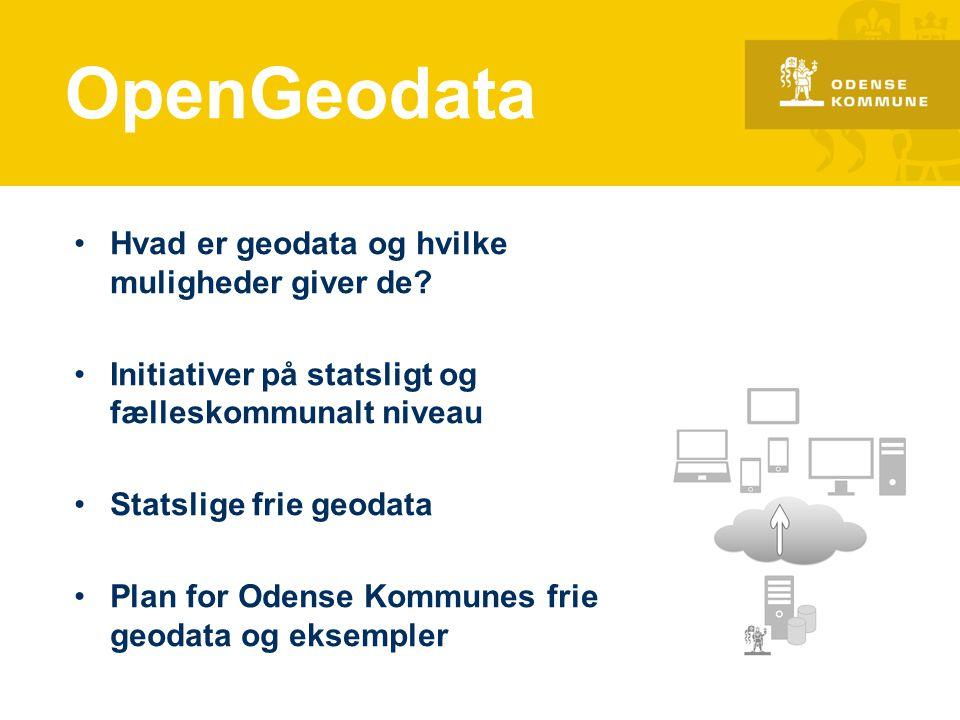 OpenGeodata Hvad er geodata og hvilke muligheder giver de
