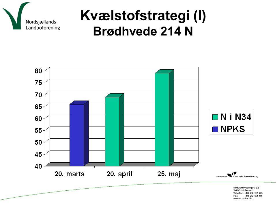 Kvælstofstrategi (I) Brødhvede 214 N