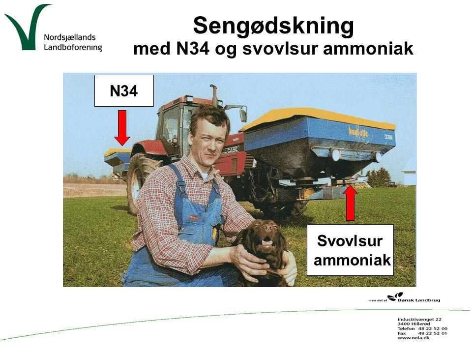 med N34 og svovlsur ammoniak