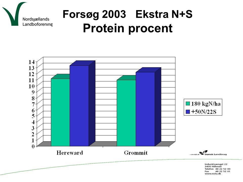 Forsøg 2003 Ekstra N+S Protein procent