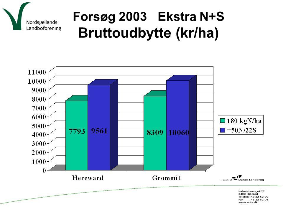 Forsøg 2003 Ekstra N+S Bruttoudbytte (kr/ha)