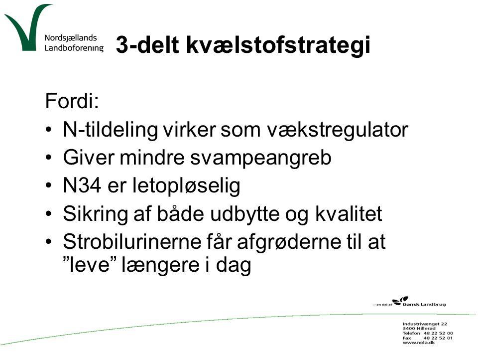 3-delt kvælstofstrategi