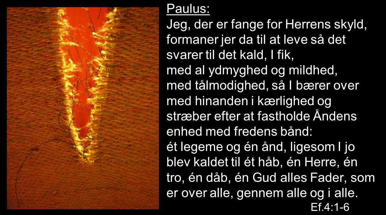 Paulus: Jeg, der er fange for Herrens skyld, formaner jer da til at leve så det svarer til det kald, I fik, med al ydmyghed og mildhed, med tålmodighed, så I bærer over med hinanden i kærlighed og stræber efter at fastholde Åndens enhed med fredens bånd: ét legeme og én ånd, ligesom I jo blev kaldet til ét håb, én Herre, én tro, én dåb, én Gud alles Fader, som er over alle, gennem alle og i alle.