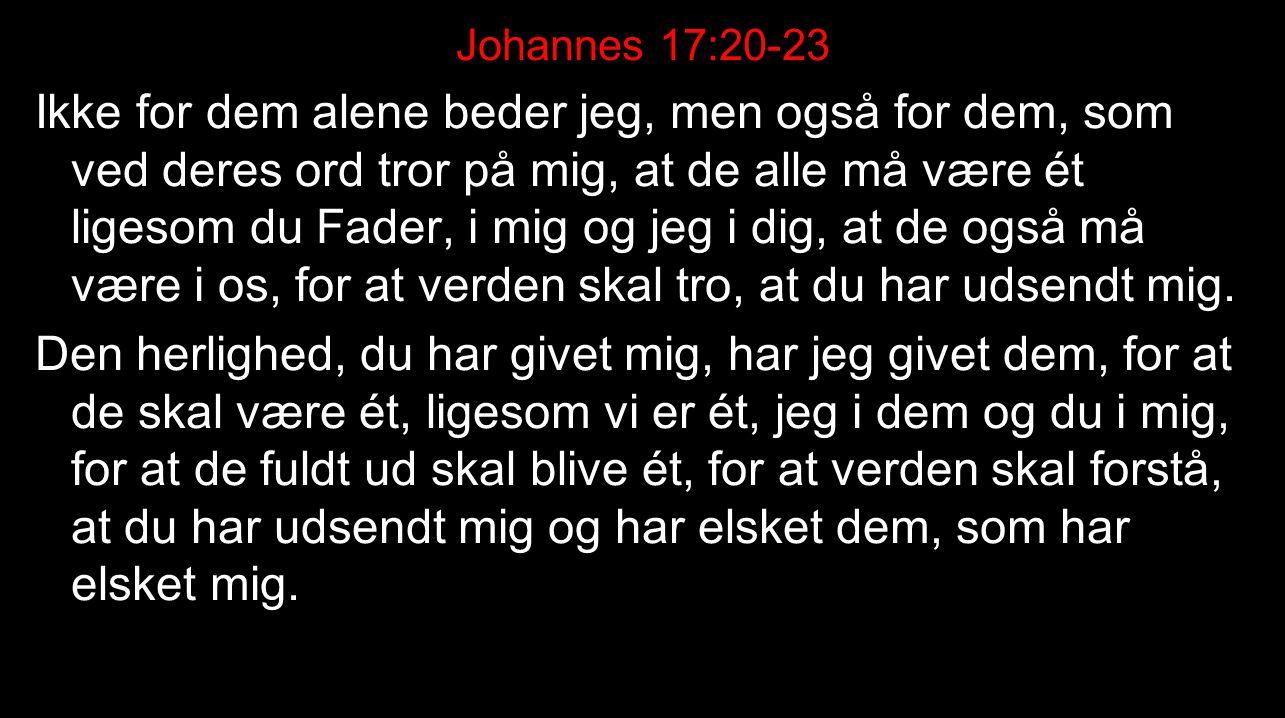 Johannes 17:20-23