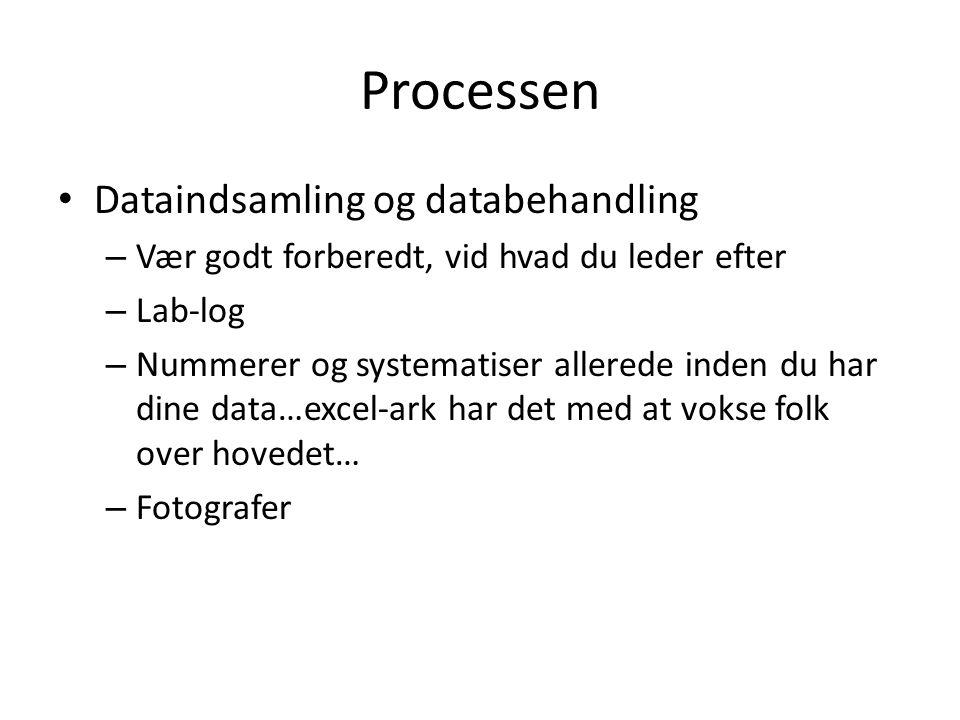 Processen Dataindsamling og databehandling