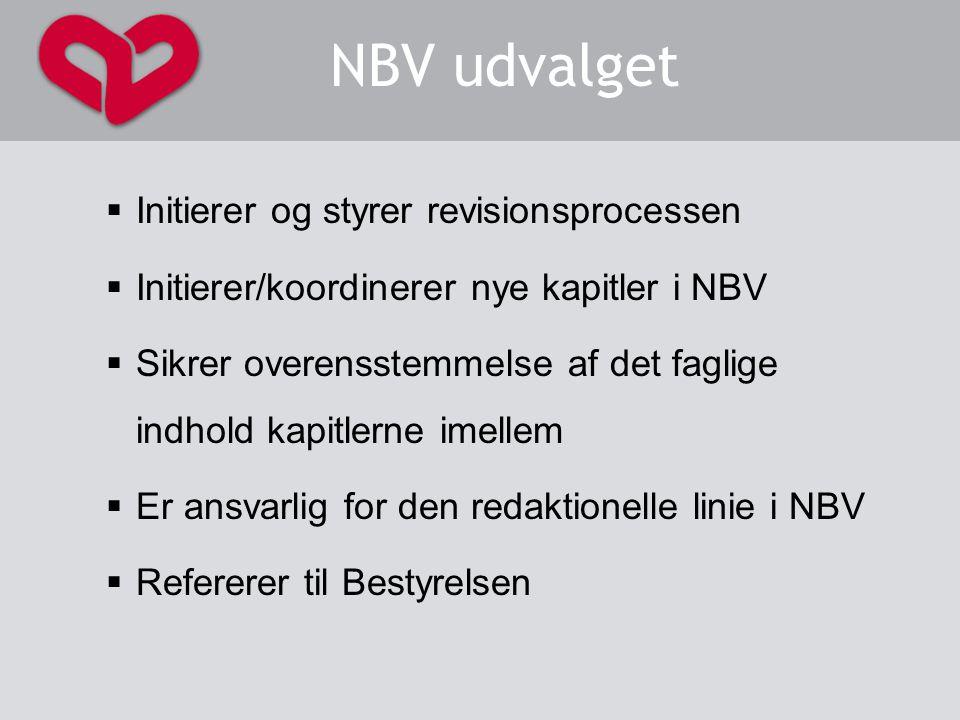 NBV udvalget Initierer og styrer revisionsprocessen
