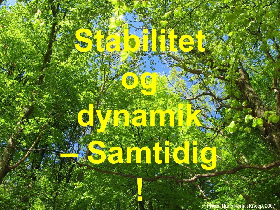 Stabilitet og dynamik – Samtidig !