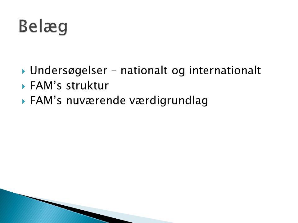 Belæg Undersøgelser – nationalt og internationalt FAM's struktur